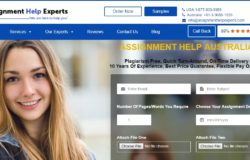 AssignmentHelpExperts.com Review